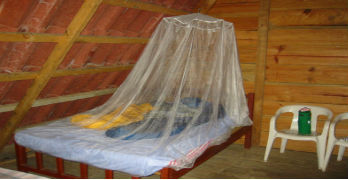 Money for Malaria Nets