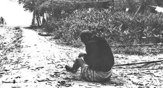 My Lai Massacre by US troops